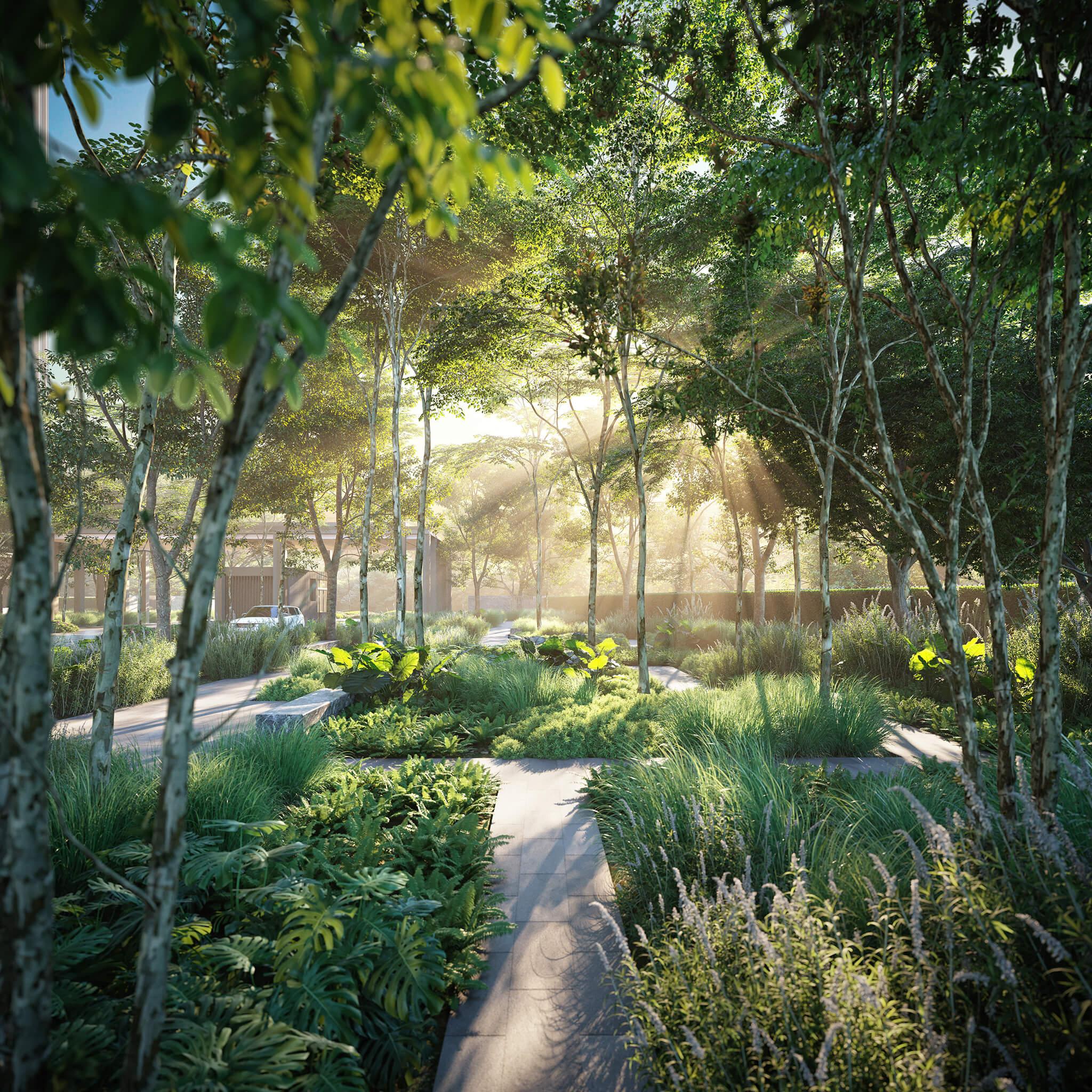 Park Place Forest Trail